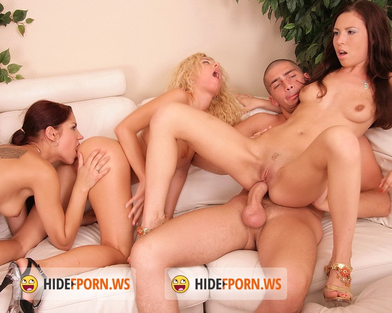 AnalPartyOrgies.com - Abbey, Angel Rivas, Brandy, Masha - Anal Party Three Ep.3 [HD 720p]