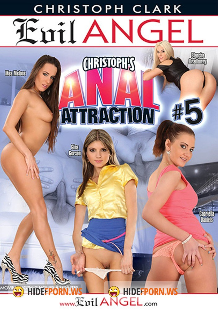 Christophs Anal Attraction 5 [2015/WEBRip 1080p]
