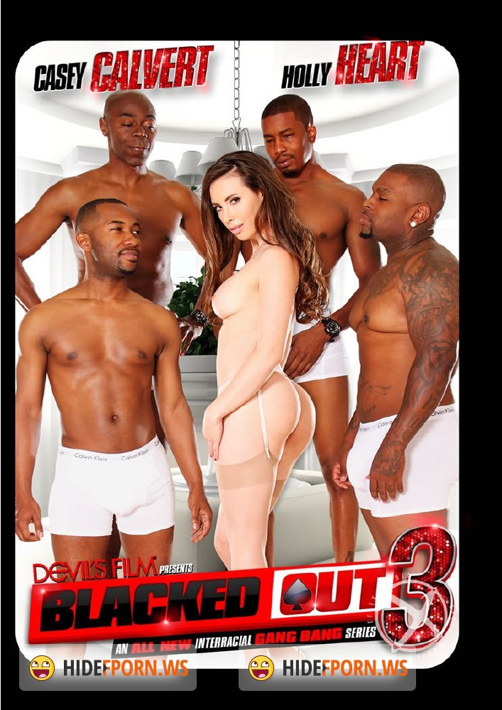 Blacked Out 3 [DVDRip]