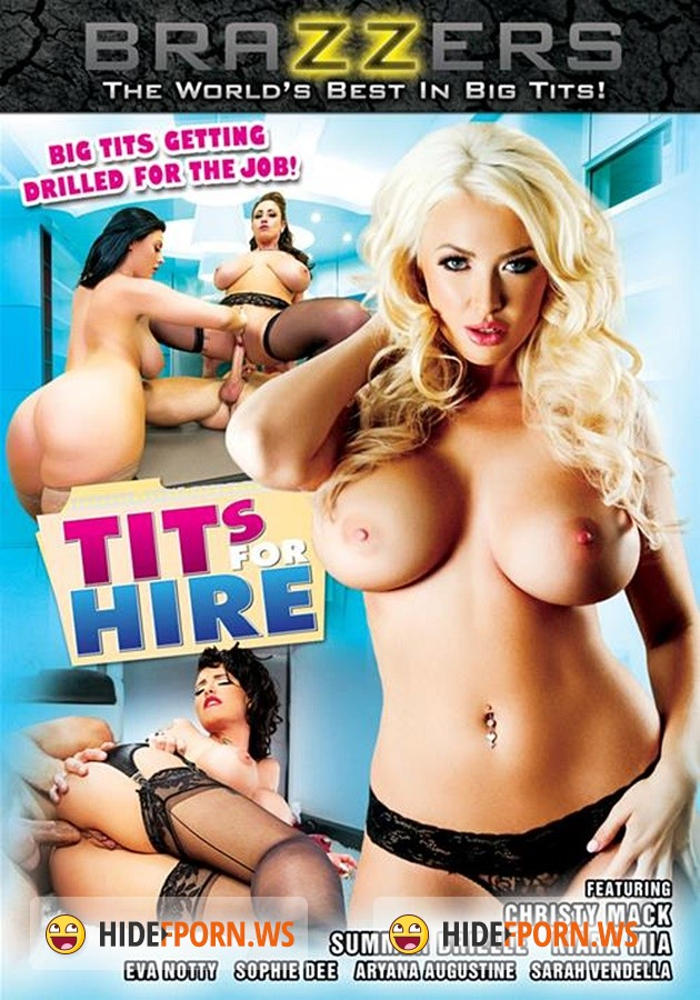 Tits Fore Hire [2014/WEBRip 1080p]