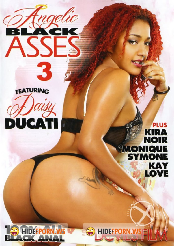 Angelic Black Asses 3 [DVDRip]