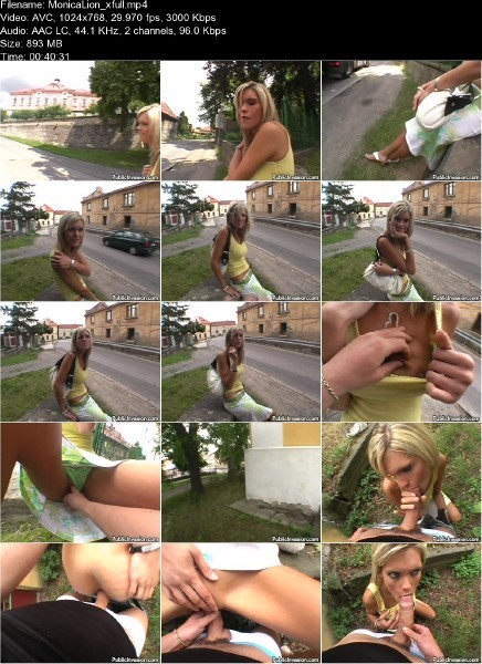 PublicInvasion.com - Monica Lion - The Horny Model [SD ]