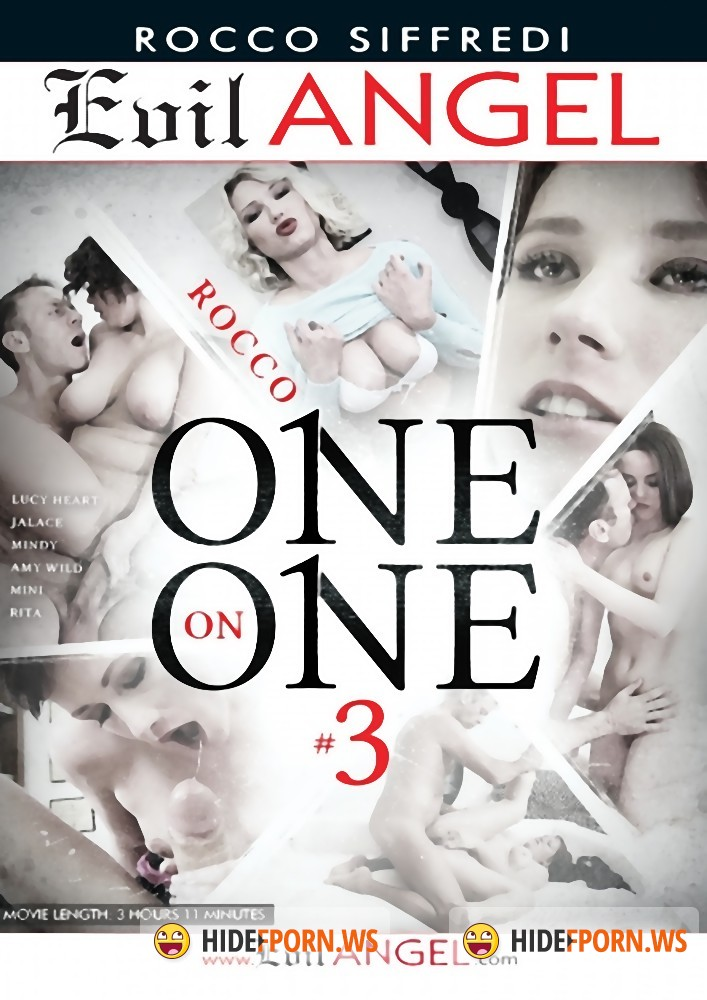 Rocco One On One 3 [WEBRip/HD]