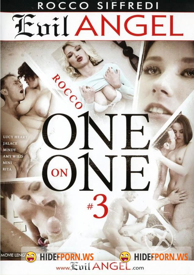 Rocco One On One 3 [2015/DVDRip]