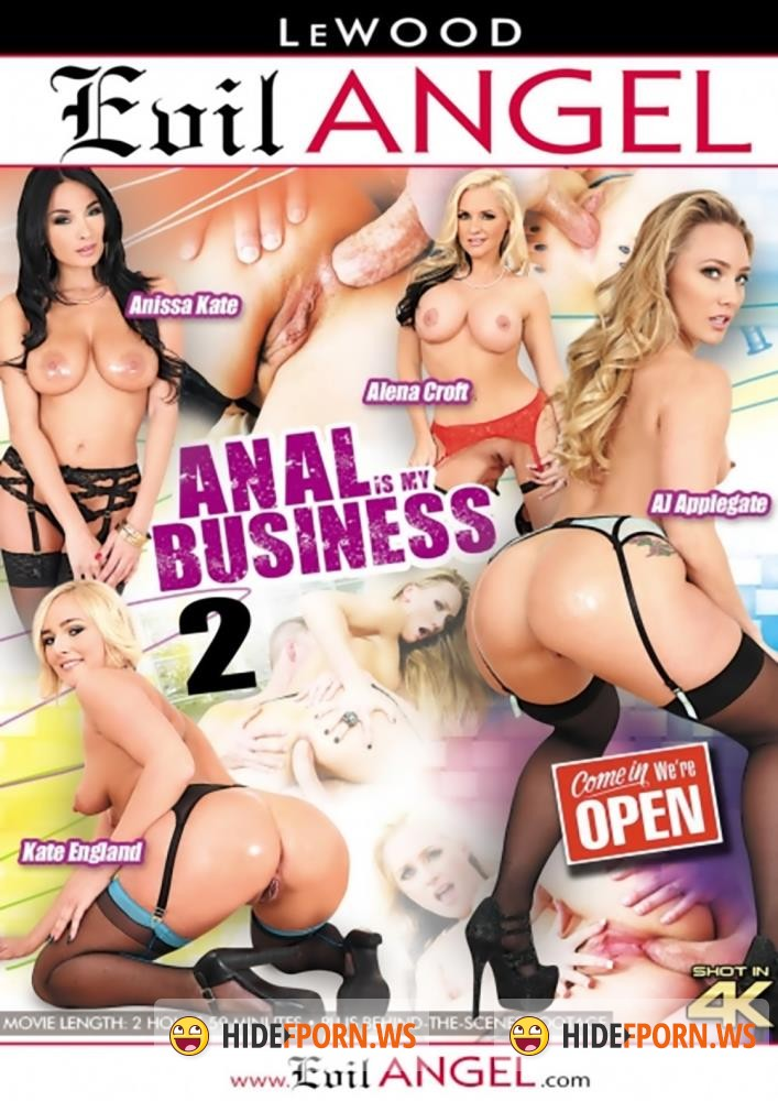 Anal Is My Business 2 [WEBRip/HD]