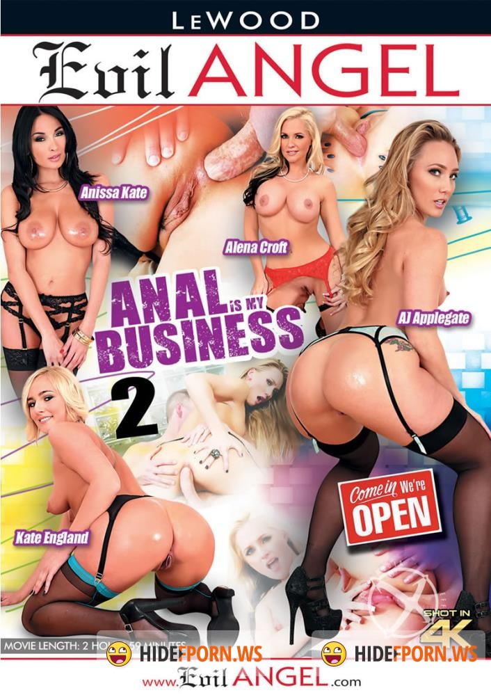 Anal Is My Business 2 [2016/WEBRip 1080p]