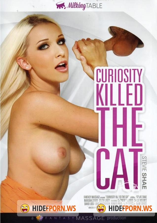 Curiosity Killed The Cat [2016/DVDRip]