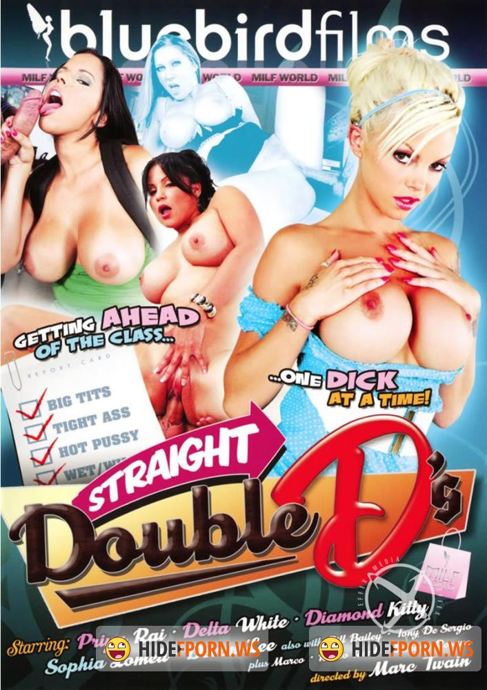 Straight Double DS [2011/WEBRip/HD 720p]
