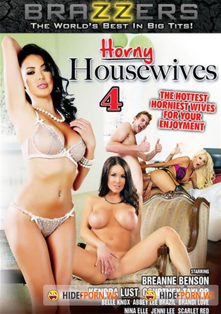 Horny Housewives 4 [DVDRip]