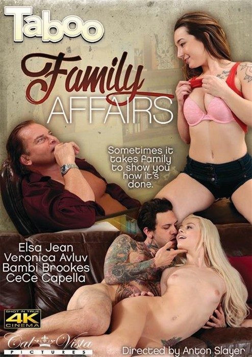 Taboo Family Affairs (2016/WEBRip/SD)