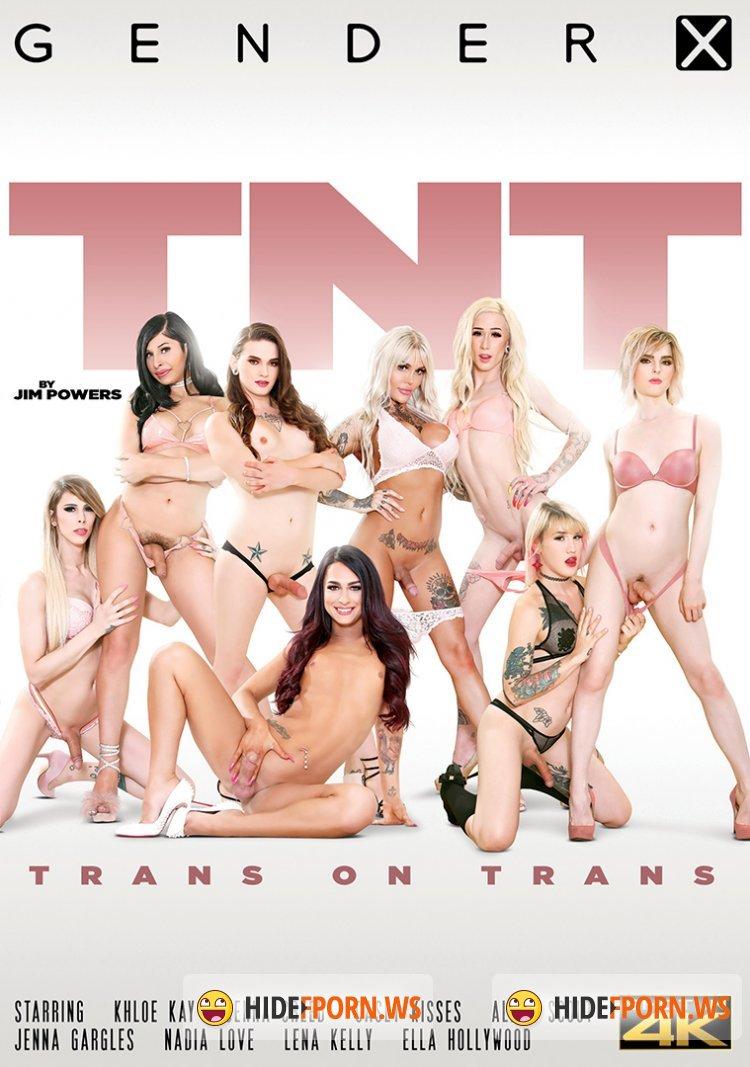 TNT - Trans on Trans [2020/WEBRip/FullHD]