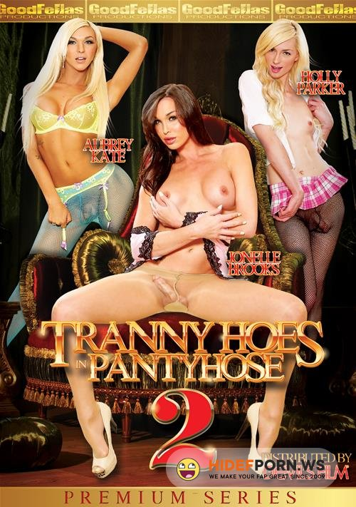 Tranny Hoes In Panty Hose 2 (FullHD/4.82 GB)