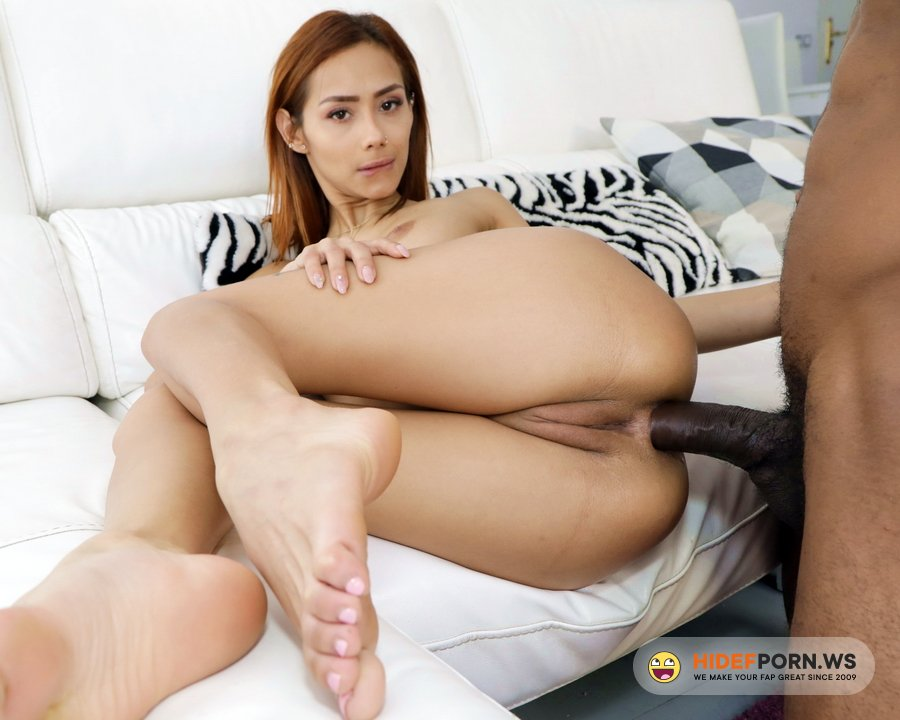 AnalVids.com, LegalPorno.com - Veronica Leal - Nasty Latina Veronica Leal Gets Hardcore Anal Sex With BBC For Lunch MSV013