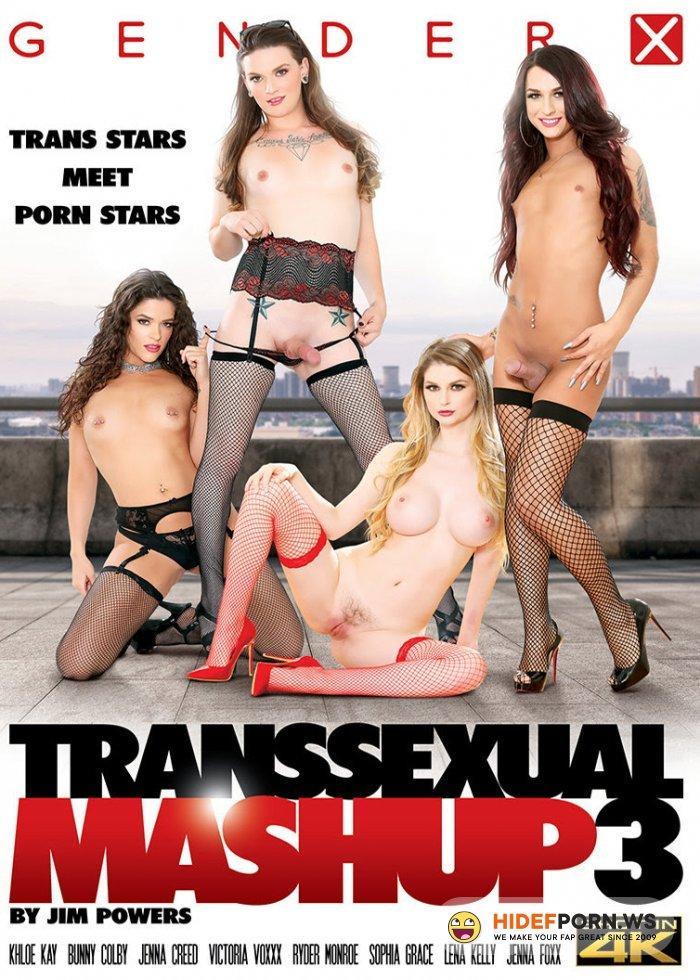 Transsexual Mashup 3 [2019/WEBRip/SD]