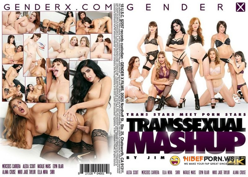 Transsexual Mashup [2017/WEBRip/FullHD]